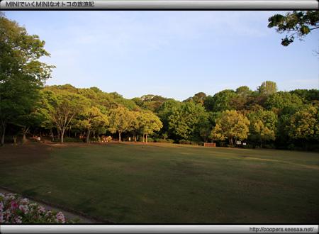 浜松城公園の展望広場