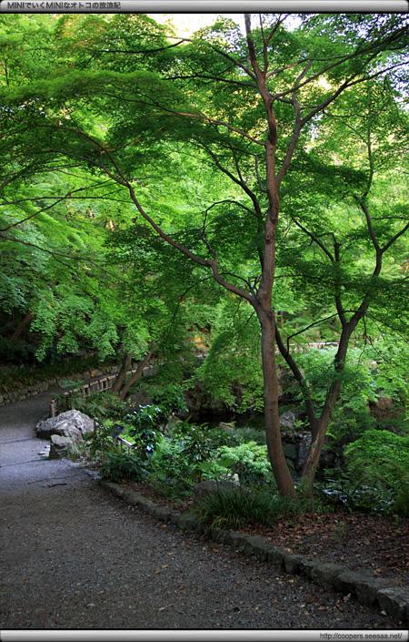 浜松城公園の日本庭園