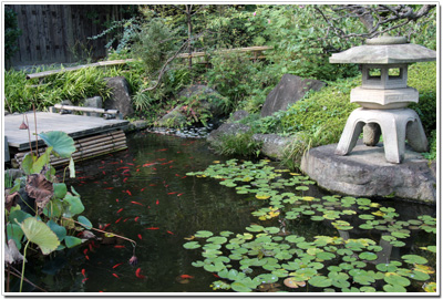 回遊庭園の池