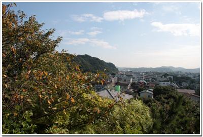 長谷寺〜見晴台