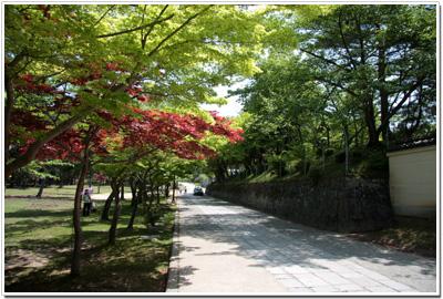 金堂(大仏殿)の北側