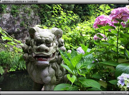銭洗弁天 宇賀福神社の狛犬
