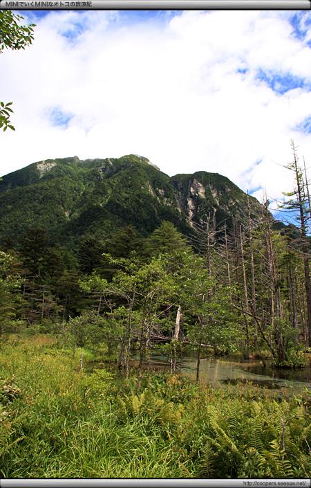 岳沢口湿原