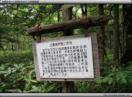 上高地の自然研究路