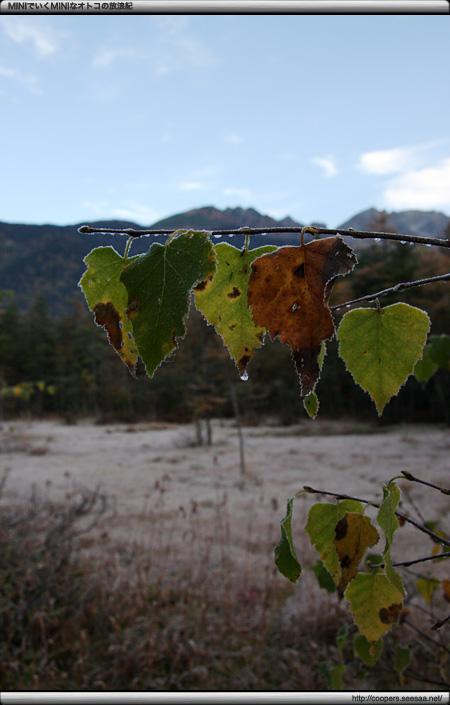 極寒の秋の上高地