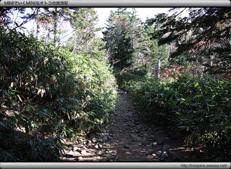 西穂高口から西穂山荘までの登山道