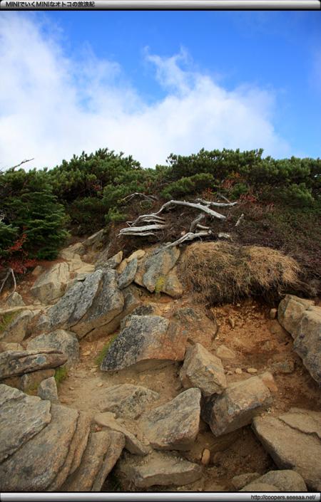 丸山への道