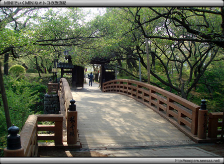 葉桜の桜雲橋